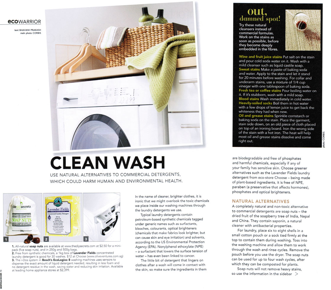Eco Friendly Detergent IDOCARE in Home & Deco Aug 2011